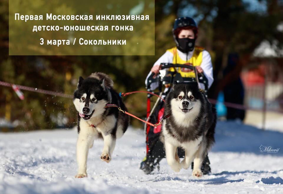 Первая Московская метель. Приезжайте!