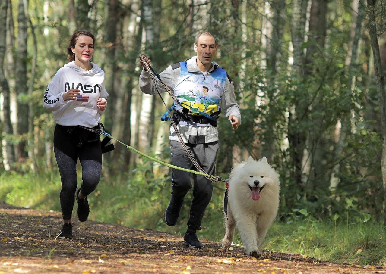 Москва на Олимпийских звездочках