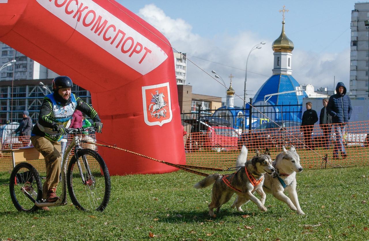 Чемпионат ЕС в Москве
